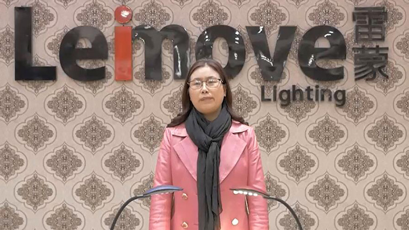 Leimove professional eye protection table lamp