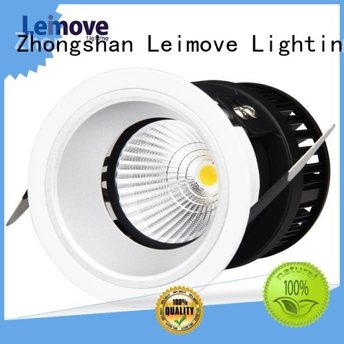 spot led flicker decorative Warranty Leimove