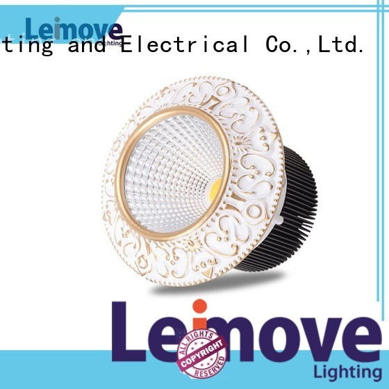 Custom downlight led spot light sale Leimove