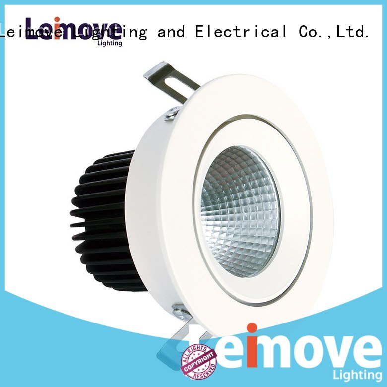Custom downlight indoor led spot light Leimove silvergold