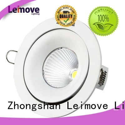 Wholesale outdoor spot led Leimove Brand